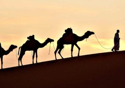 Image result for abraao no deserto